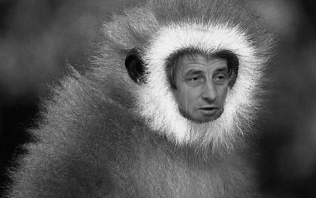 Колаж - Ивомир Димчев